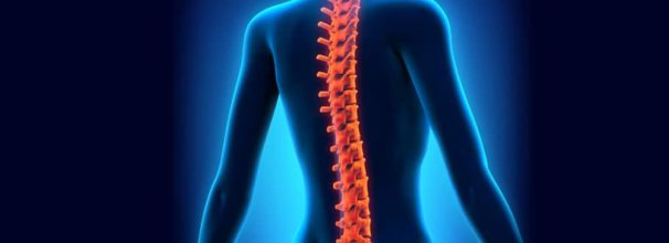 Posture and Pain Prevention as you Age