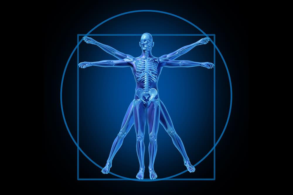 Utilizing Proper Body Mechanics is a Key Factor in Limiting Back Pain